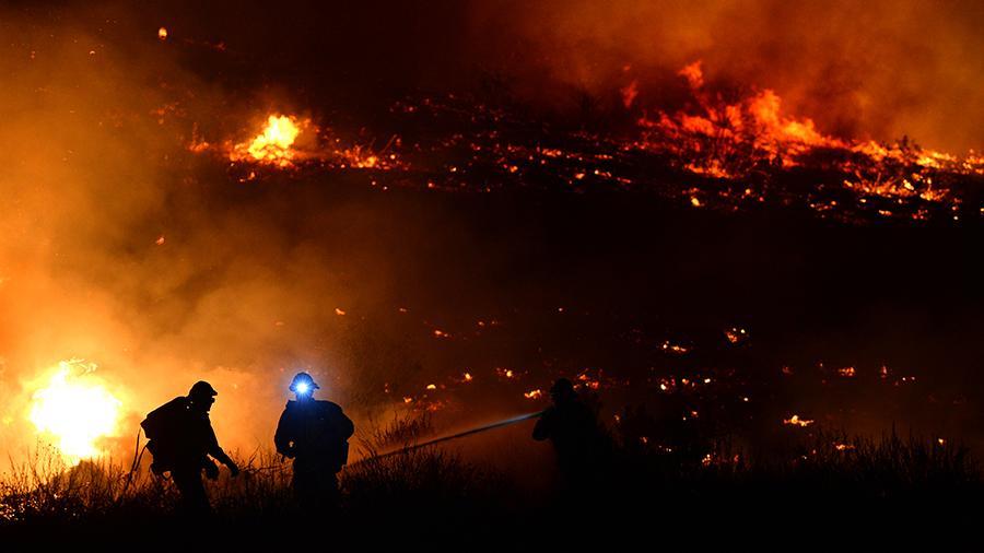 лесные пожары в подмосковье